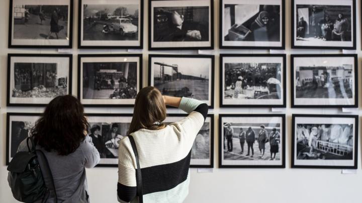Соблюдайте дистанцию: готовы ли музеи Новосибирска, театры и выставки уйти в онлайн