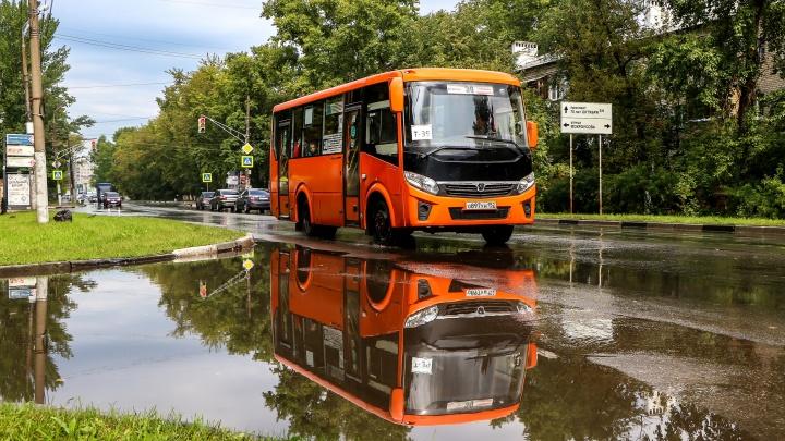 Нижегородское правительство окажет помощь частным перевозчикам