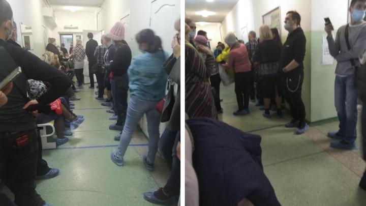 «Люди стоят по 8–10 часов»: новосибирцы застряли в огромной очереди в поликлинике