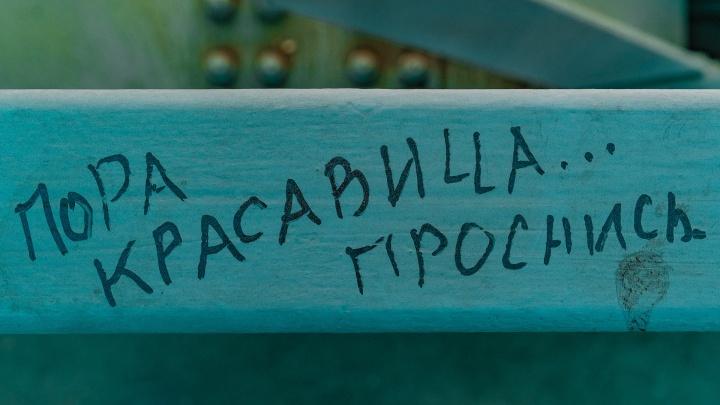 «Как город говорит»: выпускница ПГНИУ создала карту уличных слоганов Перми