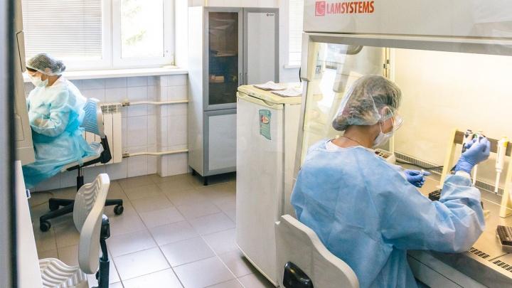 В Прикамье выявили еще 44 случая заражения COVID-19