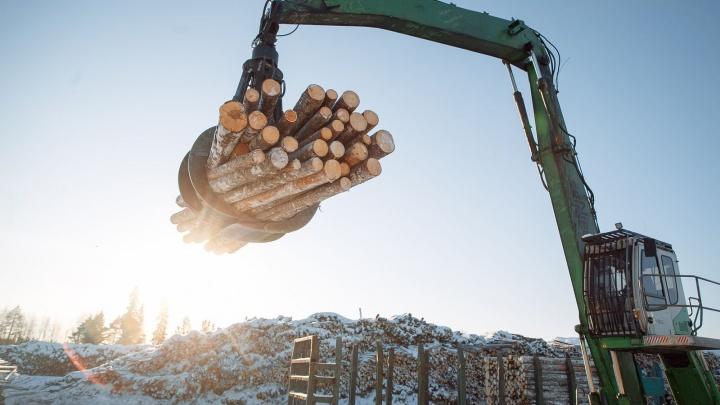 Луковецкий леспромхоз признали экологически ответственным предприятием