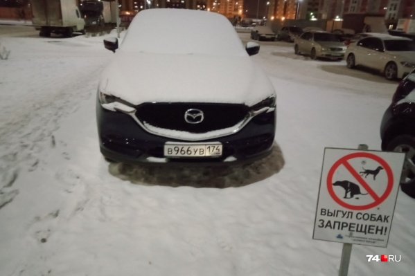 Водители не смогут избежать наказания за неправильную парковку