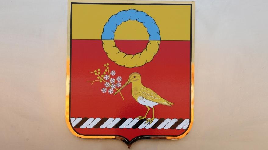 Мы увидели новый герб Калачинска — теперь на нем птичка