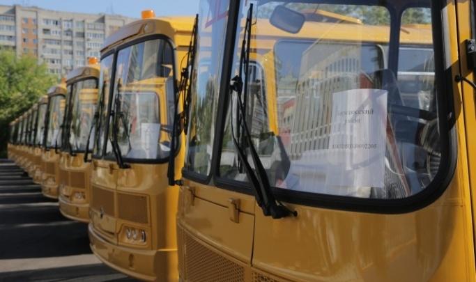 Власти края закупают 20 автобусов для школьников. На это они готовы потрать 41 миллион рублей