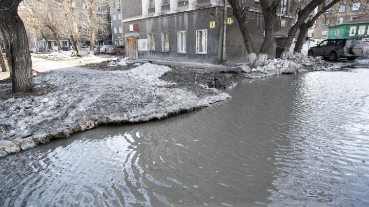 Мэрия Новосибирска назвала дату вывоза снега с территорий, которые может затопить