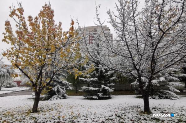 Всю неделю в Красноярске ожидается пасмурная погода