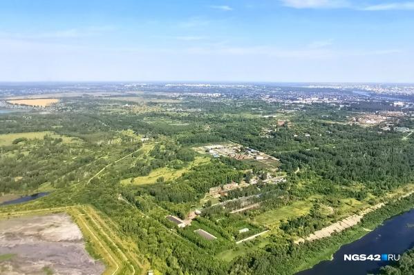 Вокруг Белово лесопарковый пояс займёт площадь около 4 тысяч гектаров, а вокруг Новокузнецка — чуть больше 7 тысяч