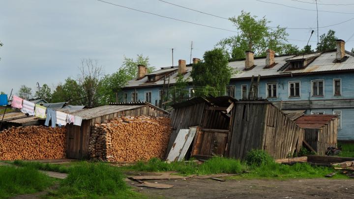 В архангельском поселке Турдеевск к людям вышел волк