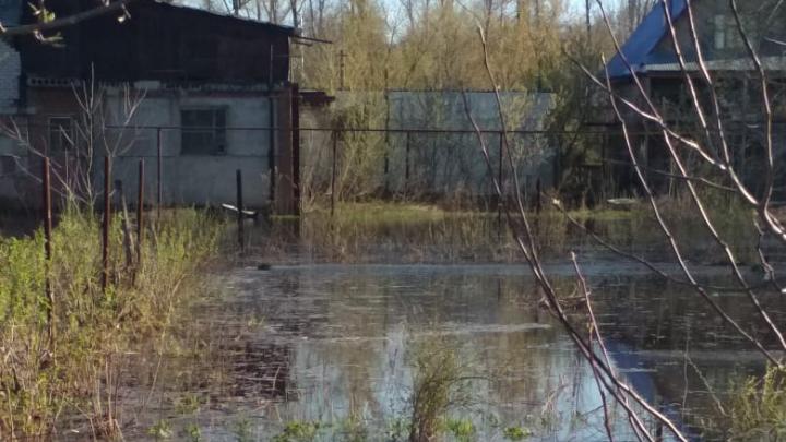 «За пять часов река пришла на 30 метров»: жители Уфы боятся проснуться под водой