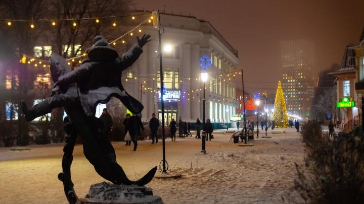 Теплее, чем в конце 2020-го: какую погоду ждать Архангельской области в первый день нового года