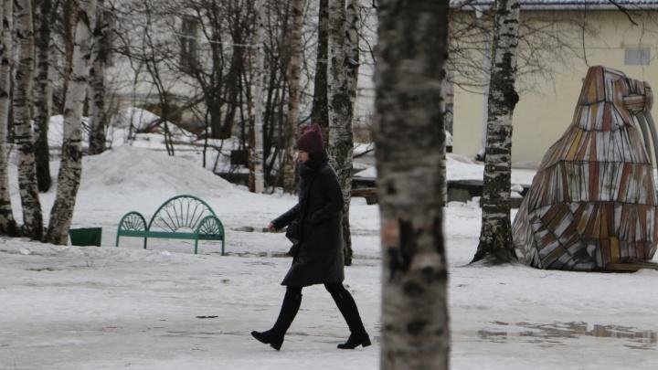 «Мы можем обсуждать каждое дерево»: как горожане могут влиять на благоустройство Архангельска?