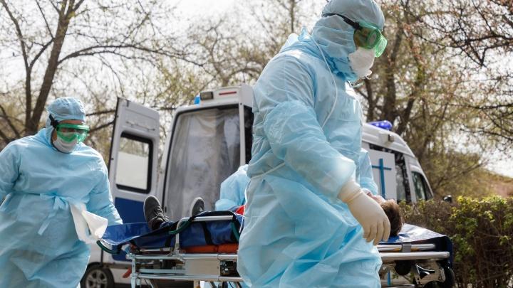Осталось семь человек до 100: за сутки в Волгоградской области выявили 14 новых случаев коронавируса