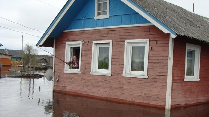 «Все в трансе, а мы решили сделать прикол»: жительница Шалакуши опубликовала фотошутку про паводок