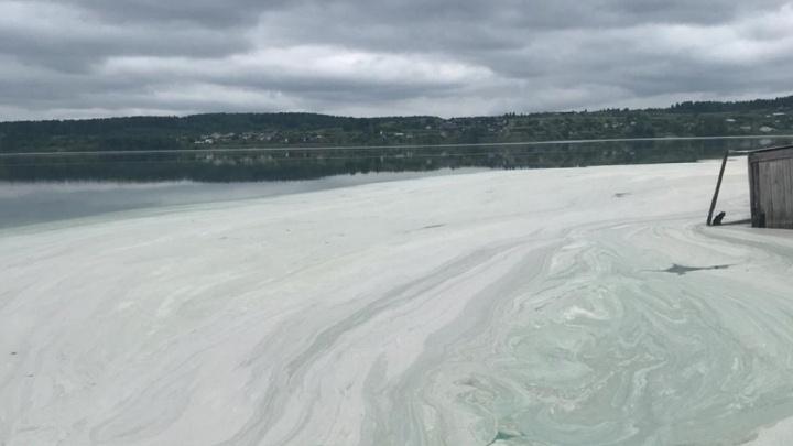 «Все местные в ужасе»: пруд в Староуткинске покрылся пеной, а вода поменяла цвет