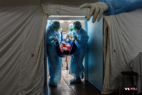 Врачам приходится регулярно осваивать новые знания в условиях эпидемии