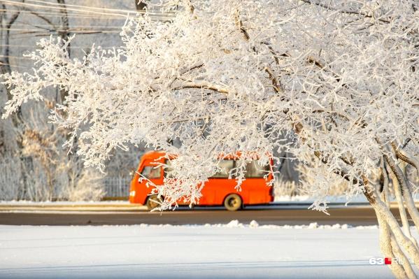 Обычный городской пейзаж на фоне белоснежных деревьев уже не кажется таким скучным
