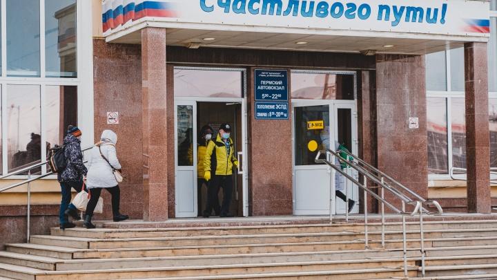 Суд частично приостановил транспортную реформу в Прикамье
