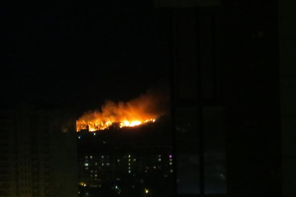 Пожар видно из города