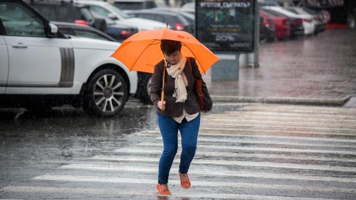 Когда в Новосибирске станет теплее и закончатся дожди? Изучаем прогноз погоды на ближайшие дни