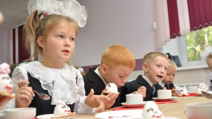 Горячая линия для родителей Поморья: куда звонить с вопросами о горячем питании для школьников?