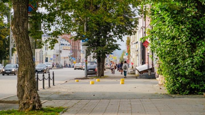 Синоптики рассказали, какой будет последняя неделя лета в Прикамье