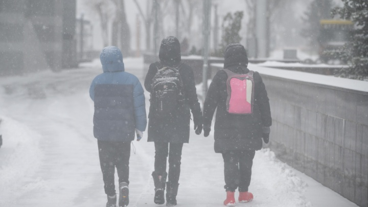 Каникулы в школах Ростовской области начнутся в разные дни