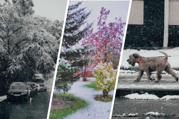 С утра вторника в разных районах города выпал снег, а красноярцы взялись за камеры