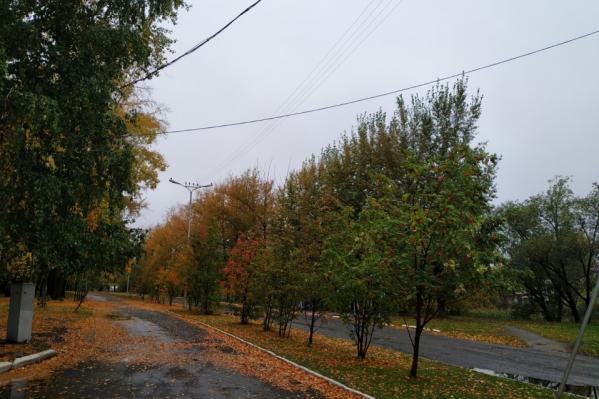 По оценкам Ильи Винштейна, сентябрь в Зауралье излишне дождливым не будет