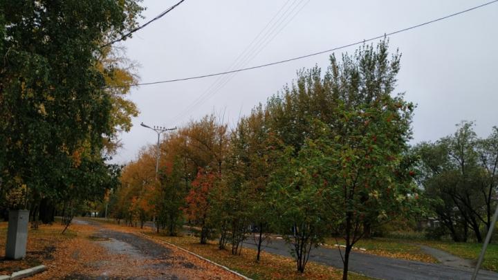 «Сентябрь будет сухим»: прогноз погоды на первый месяц осени в Курганской области
