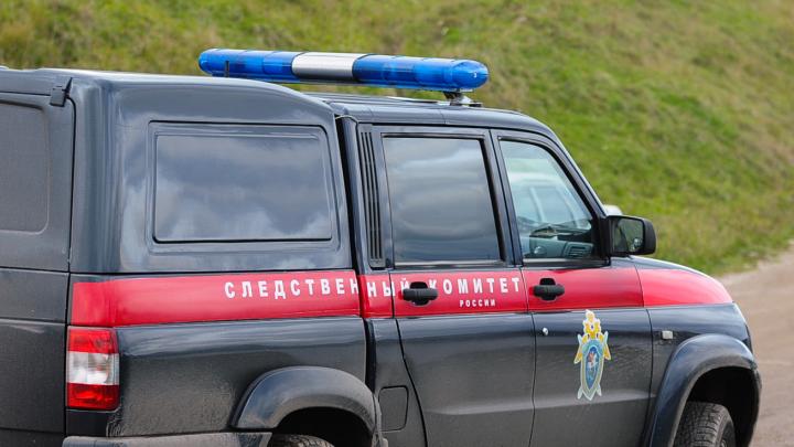 На владельца ружья, из которого депутат Заксобрания застрелил предпринимателя, завели уголовное дело