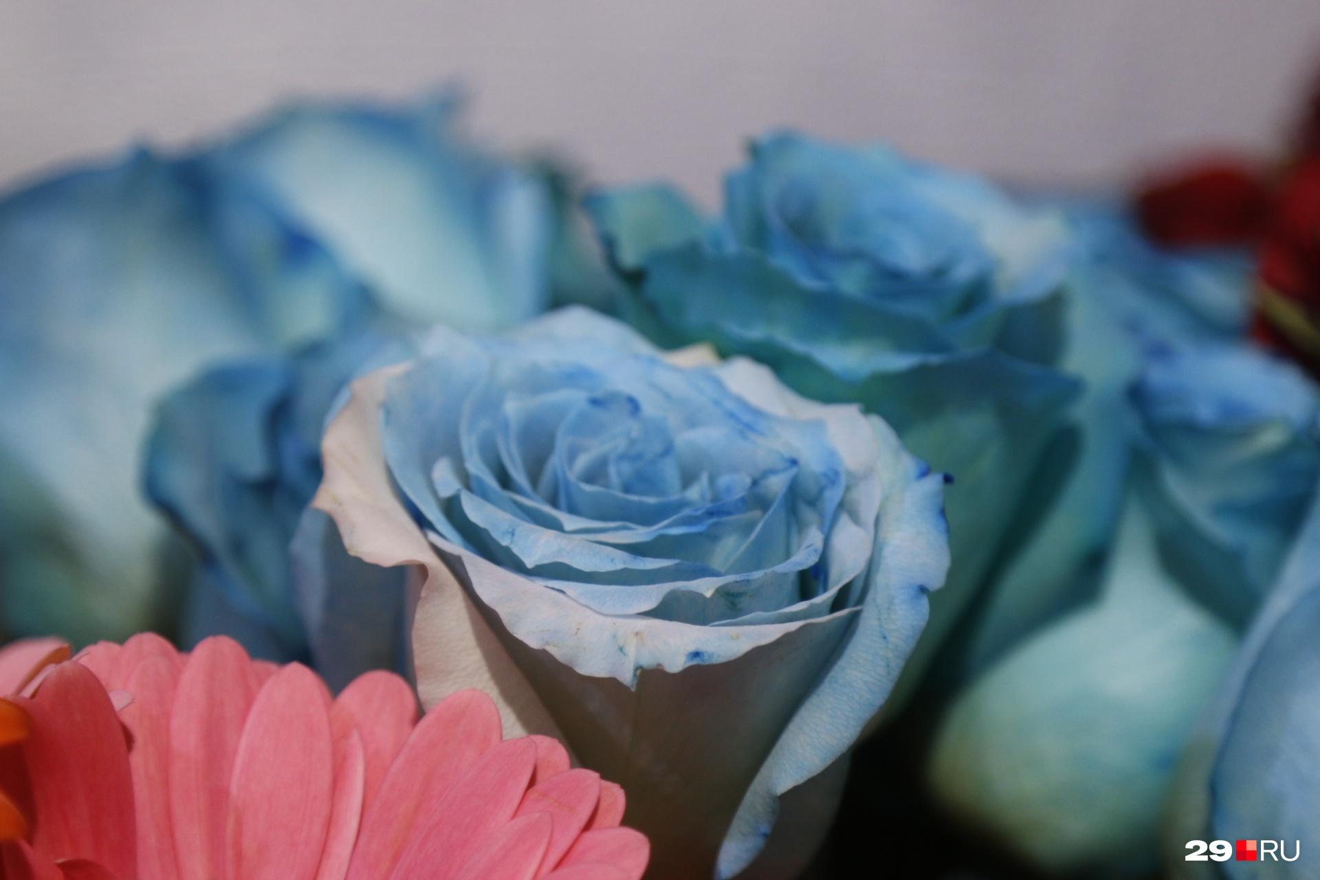Голубой цвет — это не только нежность, но и благодарность