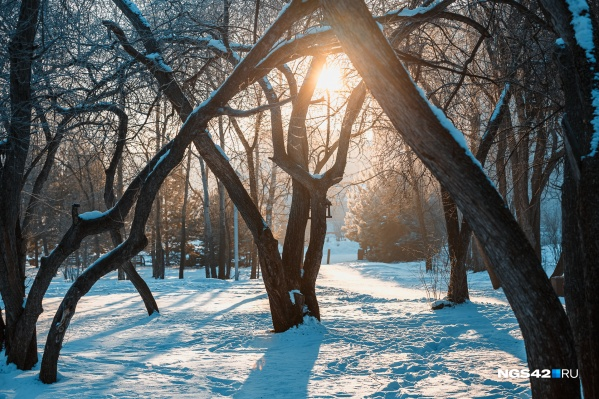 В Новокузнецке было найдено больше всего вредных примесей