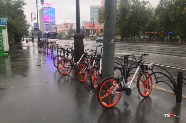Такие велосипеды тюменцы встретят сегодня по дороге на работу