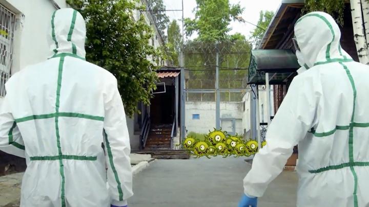 Уральские зэки борются с коронавирусом под музыку из «Охотников за привидениями». Огонь-видео из ИК-2