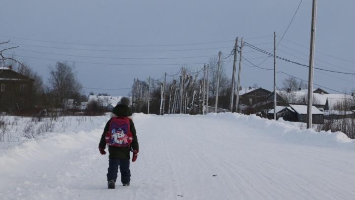 В оперштабе Архангельской области рассказали, продлят ли зимние каникулы в школах