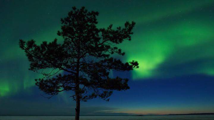 Магнитная буря разукрасила небо: смотрим на северное сияние у Белого моря — видео