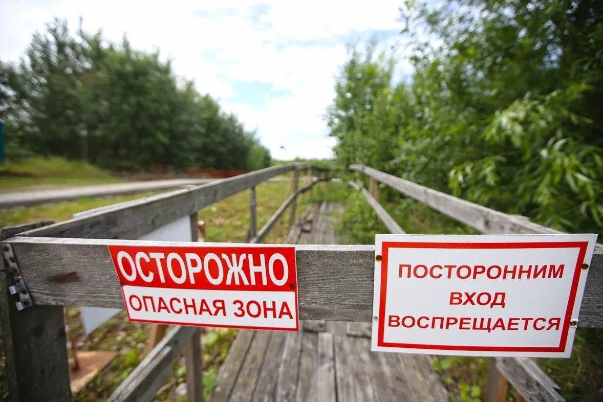 автор фотоПавел Каравашкин / «Фонтанка.ру»