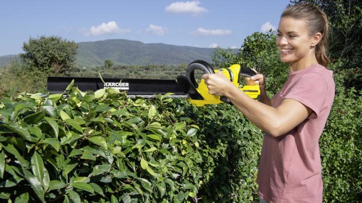 Фантастика стала реальностью: красноярцы смогут создать Версаль на собственном садовом участке