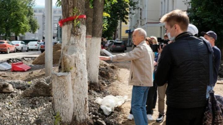 В Уфе провели оценку состояния деревьев на Советской площади