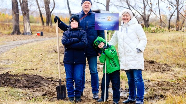 Вместо вечеринки — посадка деревьев: центр стоматологии экологично отметил 20-летие