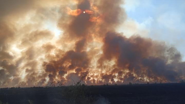 «Люди выбежали к дороге со шлангами»: два района Волгограда окутало едким дымом от пожаров