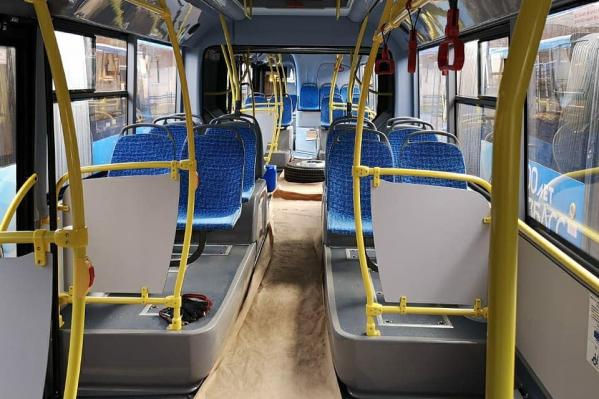 «ПитерАвто» начнет заниматься пассажироперевозками в Новокузнецке с 18 ноября