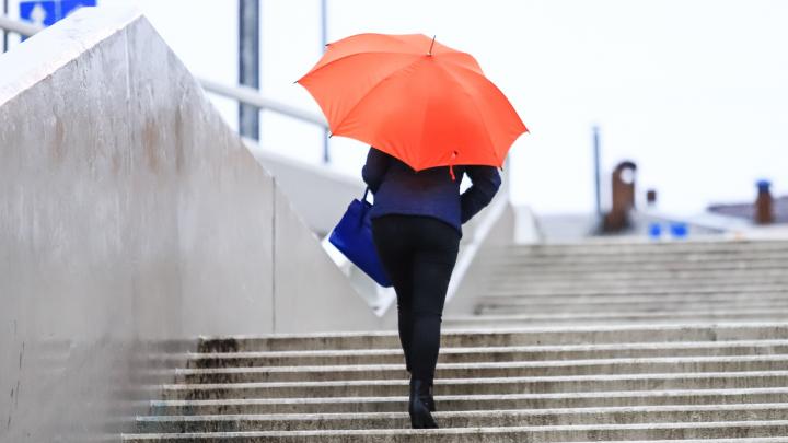 Сквозь ливень: какая погода будет в Ростове на этой неделе