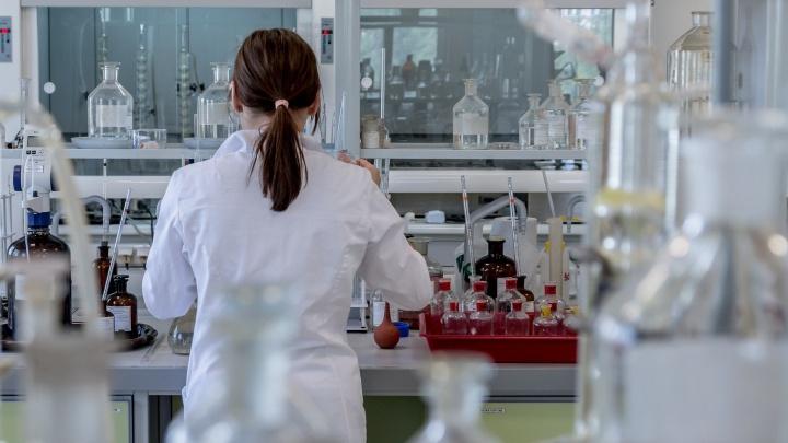 Лесопромышленники региона передали медицинским учреждениям Поморья 20 миллионов рублей