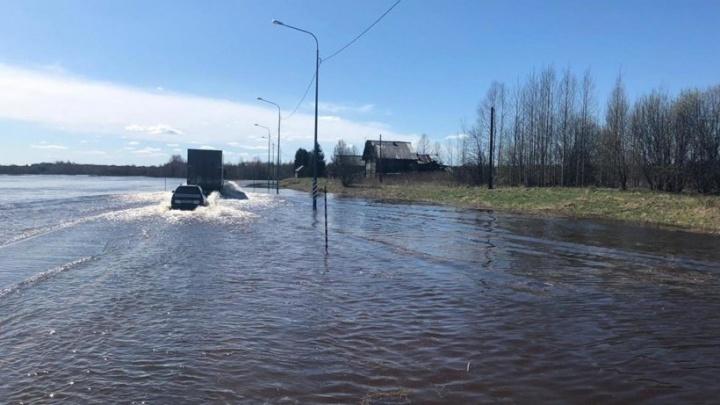 Затоплен участок трассы М-8 в Шенкурском районе. Дорожное движение могут полностью остановить