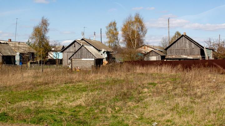 Ярославцев, уехавших на дачи, могут оштрафовать: в МЧС рассказали, за что