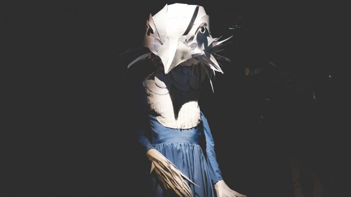 Бумажные цветы, сюр и гигантские птицы: в PERMM открывается выставка инсталляций Венеры Казаровой