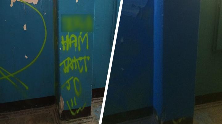 «Сам пришел»: жительница Ярославля заставила вандала закрасить изуродованные стены в подъезде