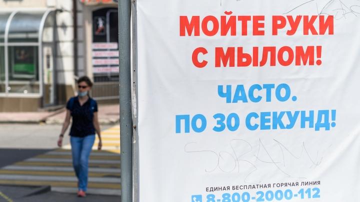 В Красноярском крае зафиксирован еще 151 случай коронавируса. Четверо умерли